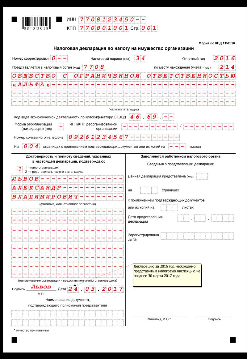 машиноориентированный бланк бухгалтерской отчетности