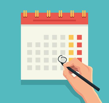 Сроки оплаты УСН за 3, 4,1,2 кварталы 2018-2019 годов